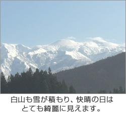 白山も雪が積もり、快晴の日はとても綺麗に見えます。